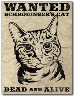 chat_schrödinger_mort_vivant