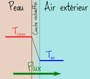 flux thermique peau