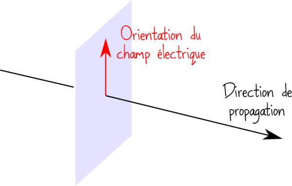 polarisation champ électromagnétique