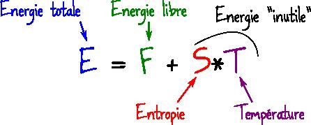 energie libre entropie