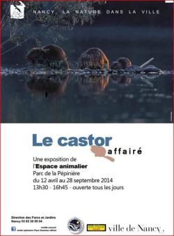 castor-affaire-nancy-pepiniere