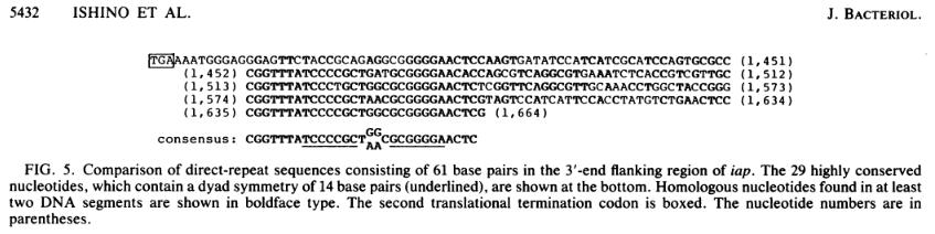 Modifier le génome avec CRISPR/Cas9 [Vidéo]